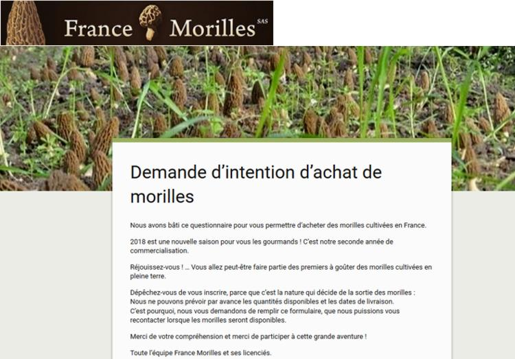 19 France Morilles