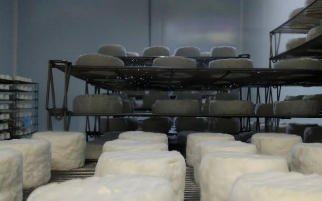 20 Fromagerie de Mussy Chaource 2