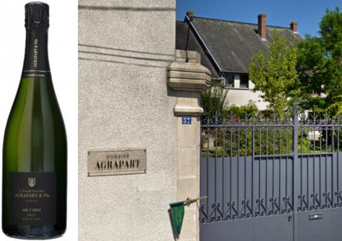 19 Domaine Champagne Agrapart Fils