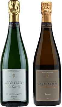 20 Champagne Maison Andre Robert