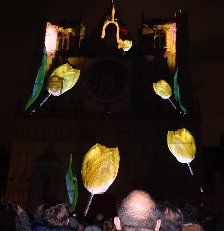 18 Fete Lumieres Cathedrale St Jean 91