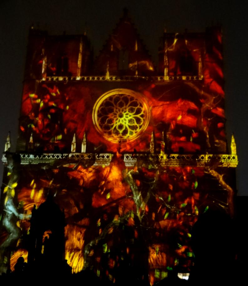 19 Fete Lumieres Cathedrale St Jean Genesis 96