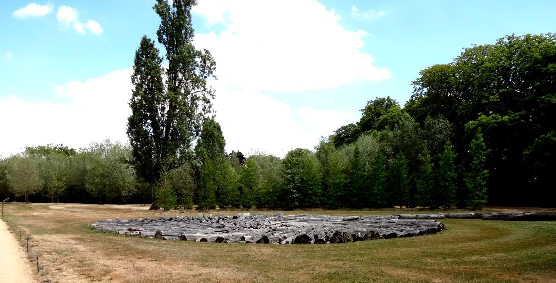 19 Chaumont sur Loire Pres Goualoup Oeuvre 9 A 5 Arbres