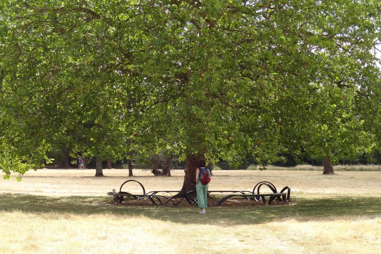 19 Chaumont sur Loire Pres Goualoup Oeuvre 9 B 3