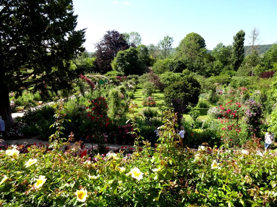 19 Giverny Jardins Claude Monet 99998 P
