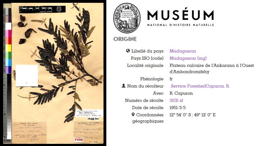 18 Museum National Histoire Naturelle Paris France